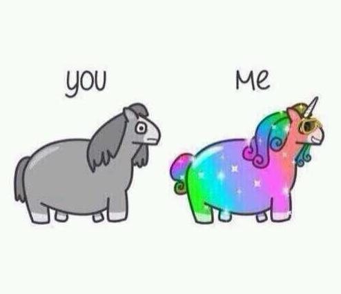 unicorn-friends-you-me.png